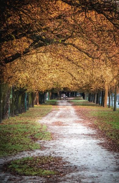 http://www.flog.pl/media/fotoforum_small/migawkifotografki_b5edf81e7f8096601988865cc9743e35.jpg